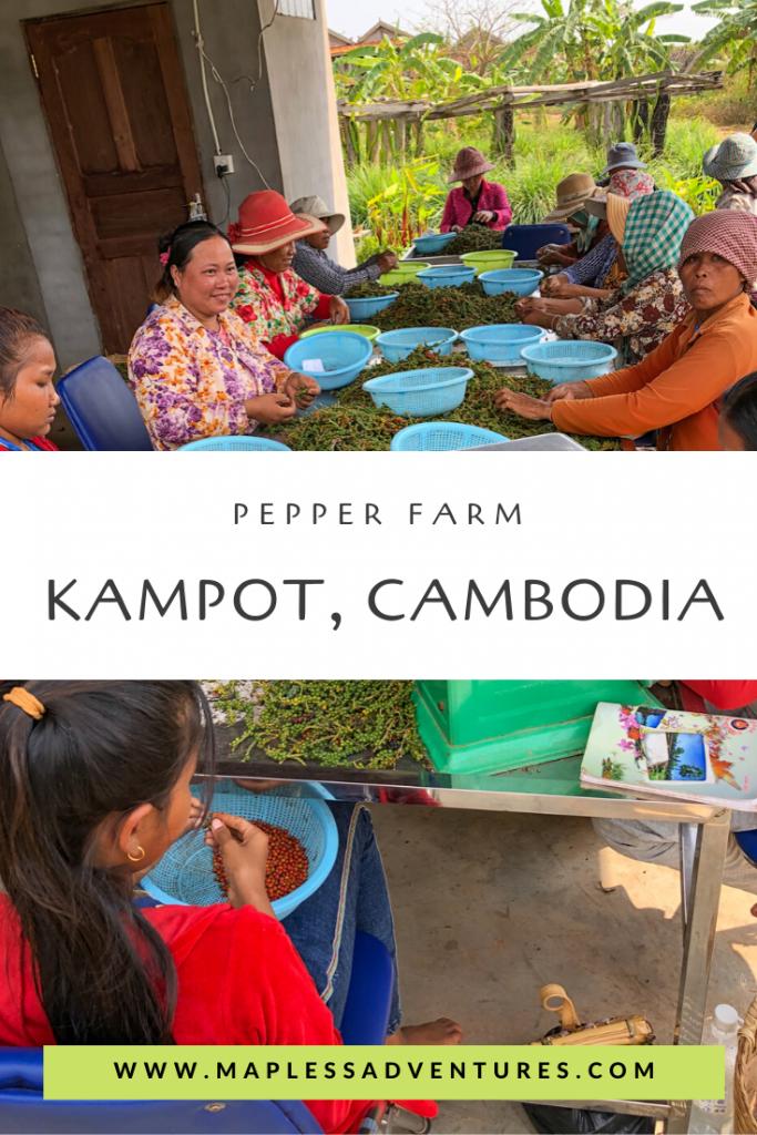 Pin Me Kampot