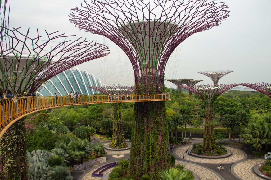 Supertrees Singapore